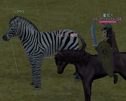 シマウマと黒ユニ.jpg
